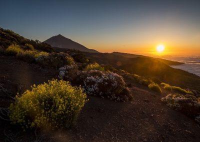 SingleTrips-Tenerife-Teide by night 1-min